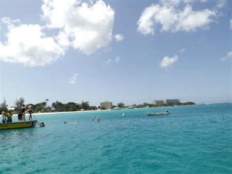 Catamaran Day Trip Barbados by Giant Turtle Picture Of Barbados Excursions Catamaran