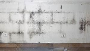 Wand Feucht Was Tun : schwarzer schimmel wand entfernen image gallery schimmel schwarzer schimmel entfernen schmmel ~ Markanthonyermac.com Haus und Dekorationen