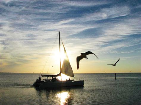Catamaran Dinner Cruise South Padre Island by It S Your Business Southern Wave Offers One Of A Kind