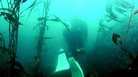 Monterey Scuba Dive Boats by Monterey Bay California Scuba Diving Gopro Hd Hero