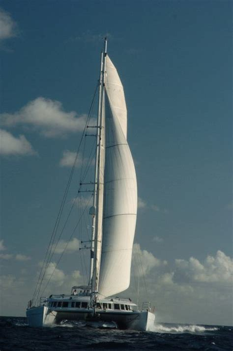 Catamaran Sailing Ship by 192 Best Sailing Catamaran Images On Pinterest Sailing