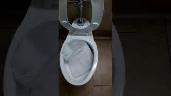 flushing clogged toilet at walmart