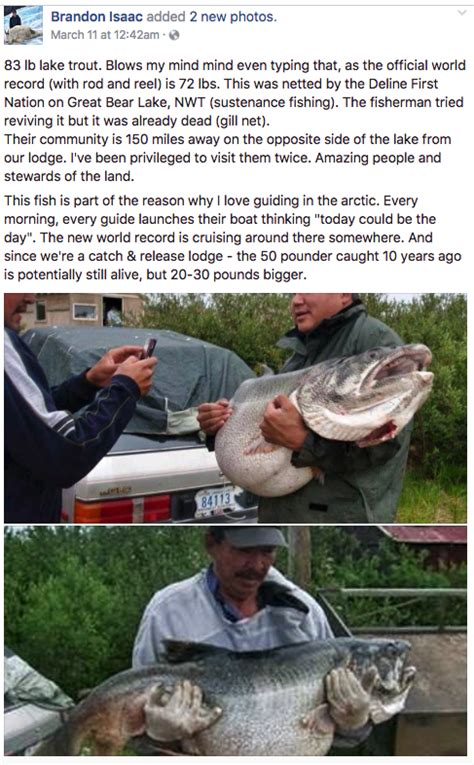 Is Isaac From The Love Boat Still Alive by Trophy Lake Trout Was World Record Size Game Fish