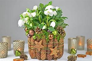 Weihnachtsdeko Im Außenbereich : tolle und originelle ideen f r ihre dekoration zu weihnachten ~ Markanthonyermac.com Haus und Dekorationen