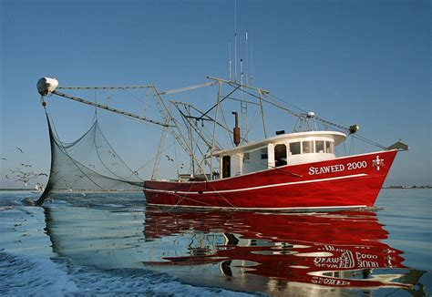 Shrimp Boat For Sale Texas by Mississippi Flooding To Have Impact On Gulf Seafood