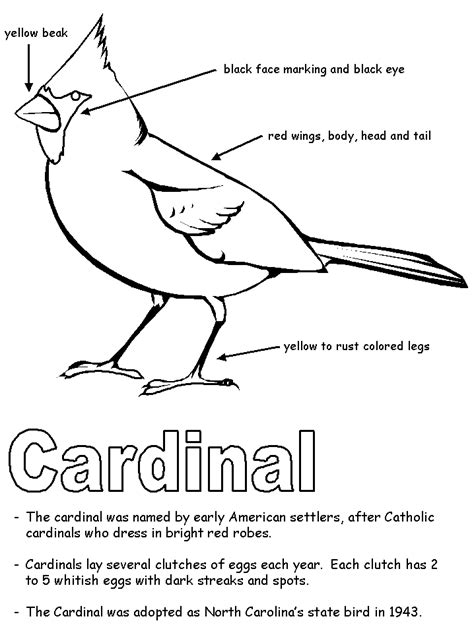Cardinal With Labels