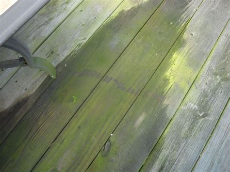 easy eco friendly tips for deck cleaning