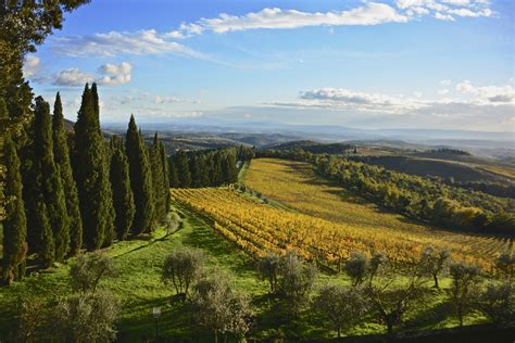 Elevation Of Gaiole In Chianti, Province Of Siena, Italy
