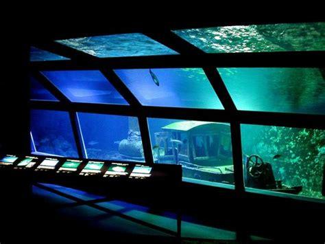 aquarium de la r 233 union gilles les bains ce qu il faut savoir pour votre visite