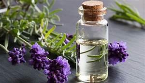 Lavendelöl Selber Machen : lavendel l wirkung anwendung und wie selber machen ~ Markanthonyermac.com Haus und Dekorationen