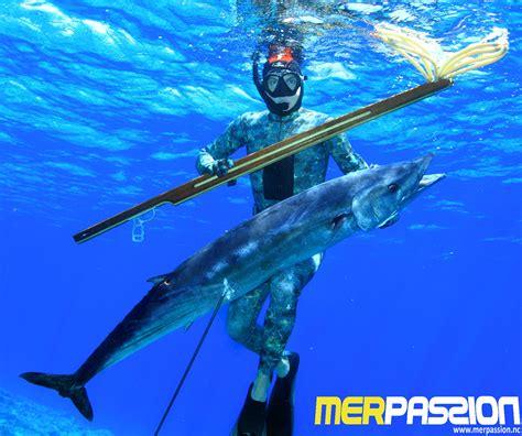 mer le sp 233 cialiste de la plong 233 e et de la chasse