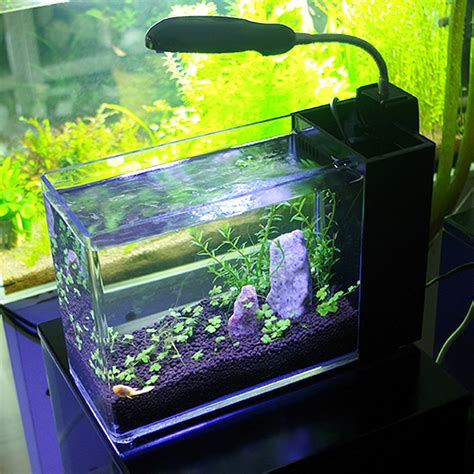 cool fish tanks on sale cheap funtrublog awesome
