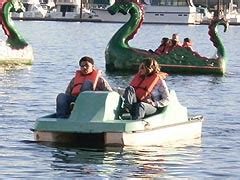 Pedal Boat Baltimore by Maryland Parks