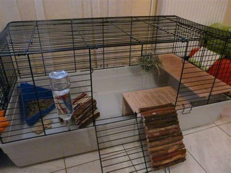 cage pour lapin la cage du lapin de l achat jusqu 224 l am 233 nagement page 1 wamiz