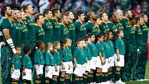 Springbok Rugby In South Africa South Africa Rugby Team ...