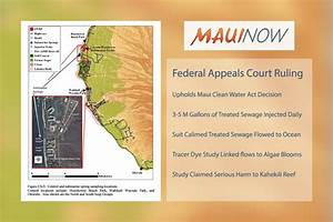 Maui Now : Federal Appeals Court Reaffirms Maui Clean ...