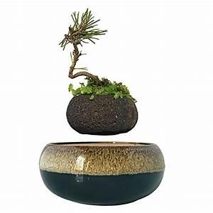 Töpfe Keramik Beschichtung Test : bonsai pot test gartenbau f r jederman ganz einfach november 2018 ~ Markanthonyermac.com Haus und Dekorationen