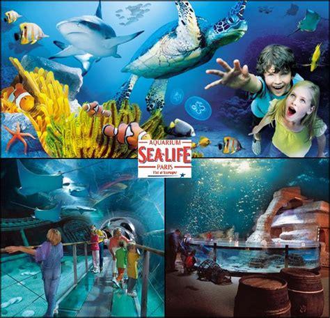 sea l aquarium du val d europe jcsatanas frjcsatanas fr