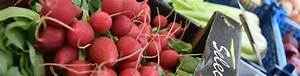 Research reveals issues and opportunities for fresh ...