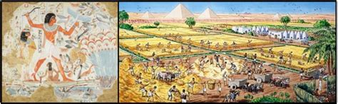 Purchase Boats Online by Buy Research Papers Online Cheap The Gift Of The Nile