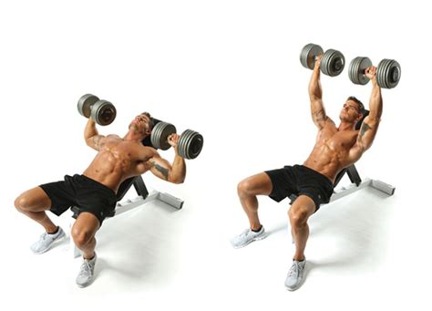 Faster Fat Burning  Muscle & Performance