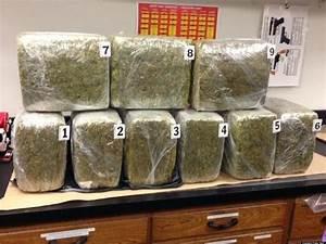 Evanston Recycling Bin Marijuana: Cops Find 100 Pounds Of ...