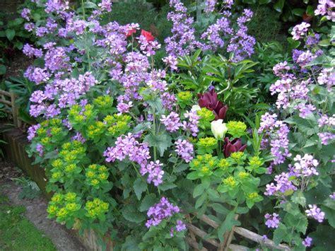 Cliserpudo Beautiful Cottage Flower Garden Images