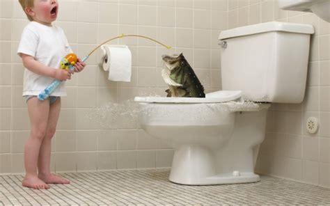 who invented the toilet wonderopolis