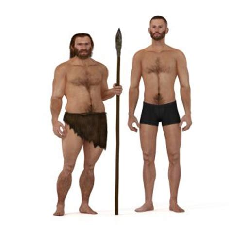 high protein diet may explain anatomical differences of neanderthals news today