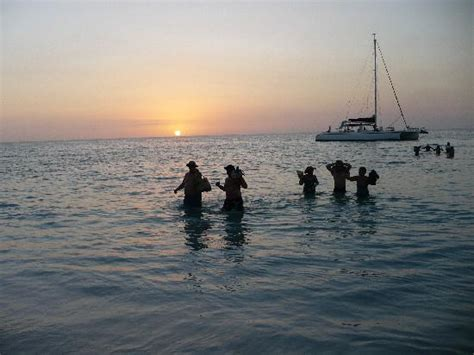 Catamaran Cruise Couples Swept Away by Catamaran Sunset Cruise Returning Picture Of Couples