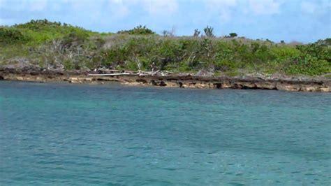 Catamaran In Bermuda by Catamaran Snorkeling Cruise Bermuda Youtube