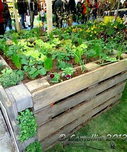 Hochbett Aus Paletten : 25 diy ideas using pallets for raised garden beds snappy pixels ~ Markanthonyermac.com Haus und Dekorationen