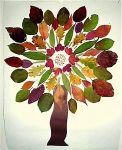Basteln Im Herbst : baum als mandala geklebt pflanzen basteln meine enkel und ich ~ Markanthonyermac.com Haus und Dekorationen