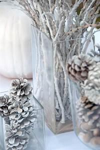 Tannenzapfen Deko Ideen : winter deko ideen zweige tannenzapfen schnee weiss vasen glas lichter basteln pinterest ~ Markanthonyermac.com Haus und Dekorationen