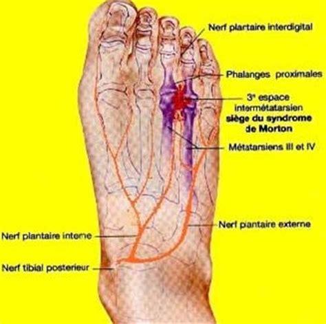 beaux pieds signe de sant 233 les signes r 233 v 233 lateurs bien 234 tre sant 233 relaxation