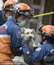 Mexico earthquake rescuer finds bodies and breaks down ...