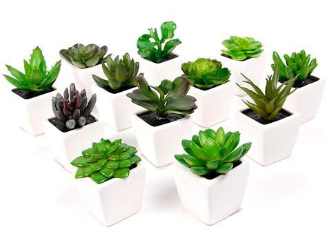 plante grasse artificielle succulente cact 233 e en mini pot