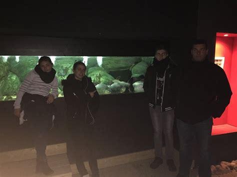 parc aquarium les naiades ottrott ce qu il faut savoir pour votre visite tripadvisor