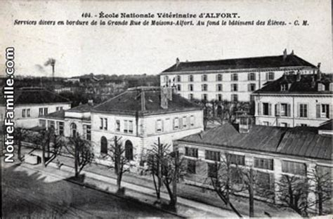 l ina encore l ina l ecole nationale v 233 t 233 rinaire d alfort en 1934 vet and the city