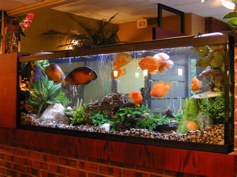 achat vente acheter aquarium pas cher
