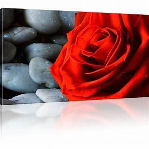 Bild 3 Teilig Auf Leinwand : rose blume bild auf leinwand ~ Markanthonyermac.com Haus und Dekorationen