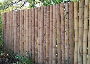 Sichtschutzzaun Bambus Holz : sichtschutz aus bambusrohr selber bauen halbschalen und bunte dicke bambusrohe online kaufen ~ Markanthonyermac.com Haus und Dekorationen