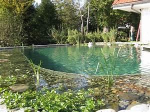 Badeteich Im Garten : graf gartenbau schwimmteich gmbh gartenbau badeteiche und schwimmteiche ~ Markanthonyermac.com Haus und Dekorationen