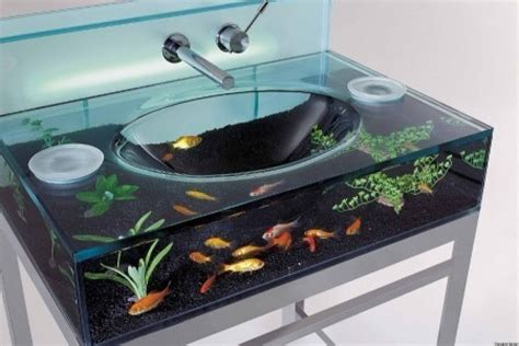 cool aquariums 10 fish tanks that will relax you photos
