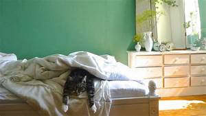 Wandfarben Ideen Schlafzimmer : die sch nsten ideen f r die wandfarbe im schlafzimmer ~ Markanthonyermac.com Haus und Dekorationen
