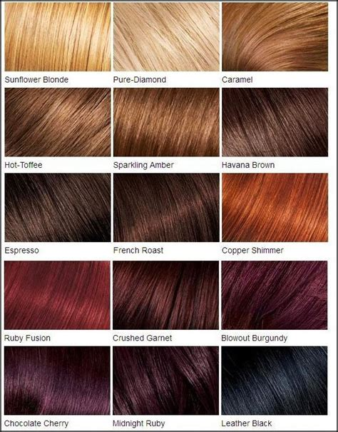 fall in with hair color chart hair colour