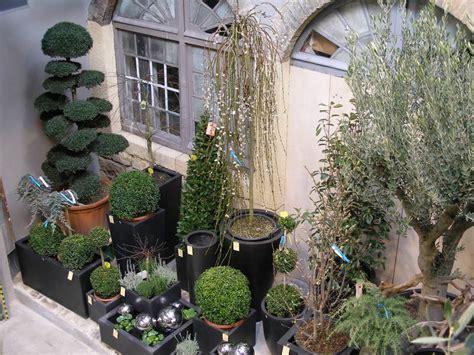 plantes d ext 233 rieur d exception vatry fleuriste