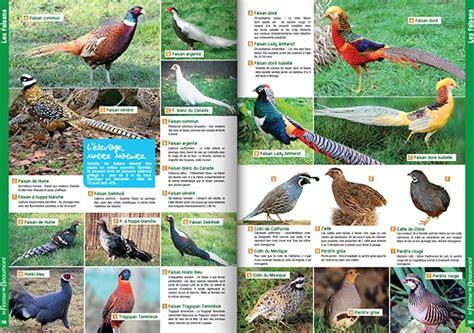 catalogue la ferme de beaumont le catalogue en ligne pour les animaux de ferme