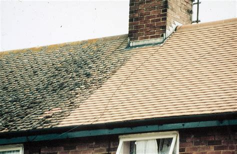 Roofing and Roof Care  Roof Waterproofing  Mould Growth