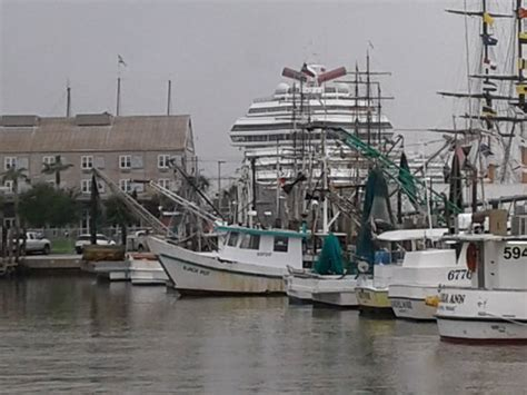 Party Boats Galveston Island by Early Morning Arrival Picture Of Williams Party Boats